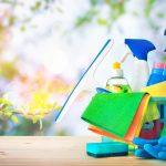 Ecopods, duurzaam schoonmaken